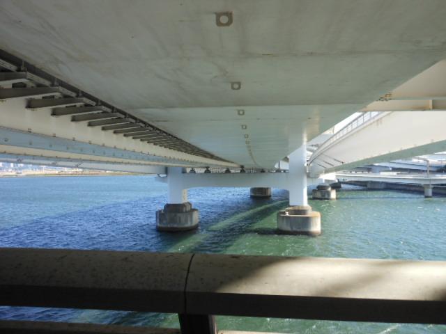 橋の下から東京湾を眺める